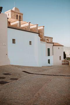 Romantische, kleurrijke straat op Ibiza | Architectuur | Straatfotografie van eighty8things