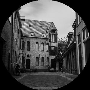 Vishoek Groningen van Daniel Houben