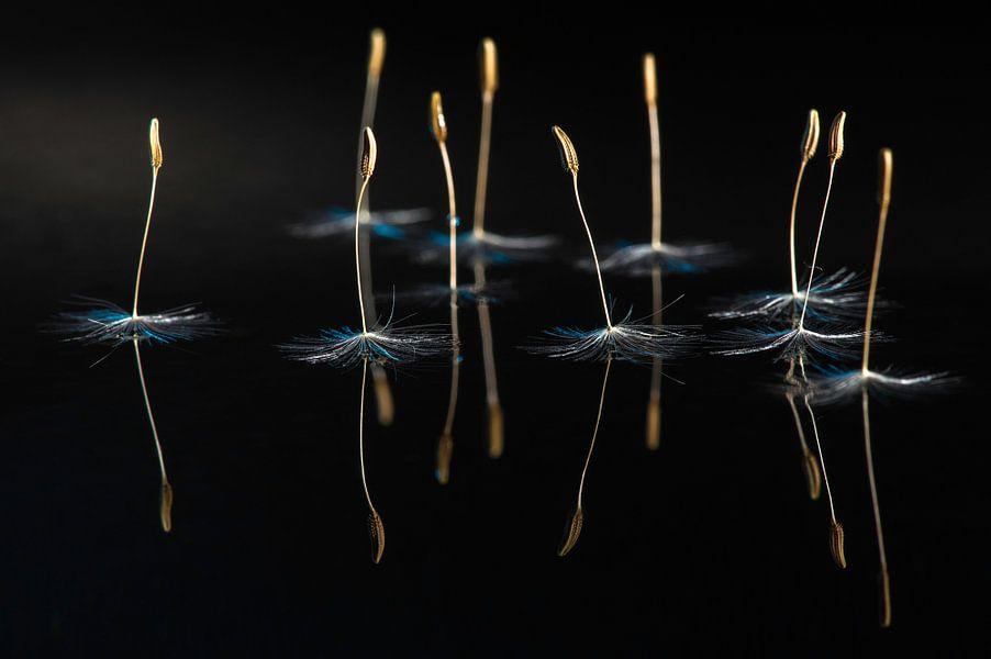 Dansende Ballerina's bij maanlicht van Gerry van Roosmalen