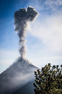 Vulkaan Fuego van Kim van Dijk