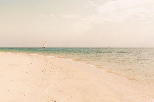 Zanzibar zeilboot von Andy Troy