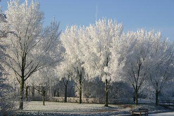 Winterlandschap van Erwin Woutersen