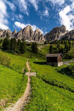 Frühling am Grödner Joch in Südtirol von Achim Thomae