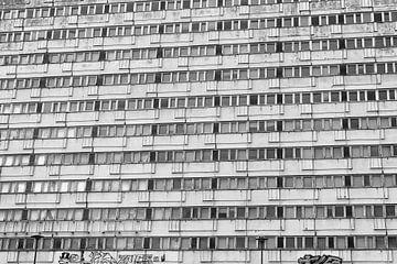 Verval in Berlijn van Ellen van Schravendijk
