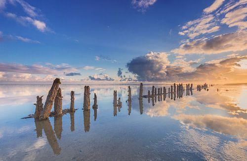 Oude zeewering in de Waddenzee bij Wierum van