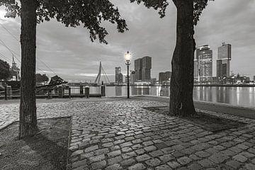 Rotterdam vanaf de Veerhaven van Martien Snikkers