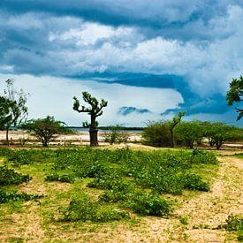 Storm II, Senegal van Joke Van Eeghem