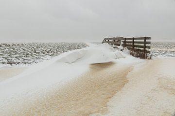 Winter Wiese Landschaft von FotoBob