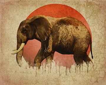 Klimawandel - Elefantenwandern von Jan Keteleer