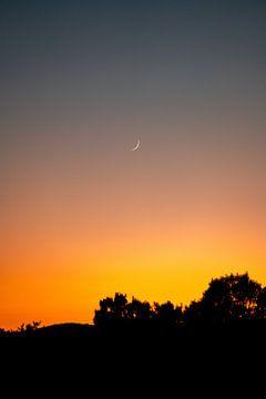 Halve maan bij zonsondergang met de avondgloed van Leo Schindzielorz