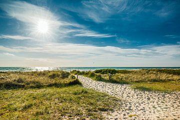 Strandweg von Ursula Reins