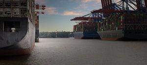 Vrachtschepen in de haven van Hamburg / Waltershof van Jonas Weinitschke