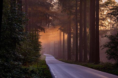 De weg naar nergens