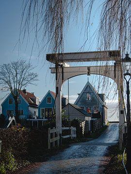 Typische niederländische Deichhäuser von Roos Maryne - Natuur fotografie