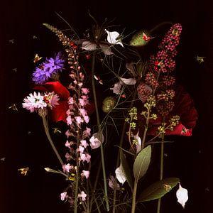 Blumenwiese   Flower meadow