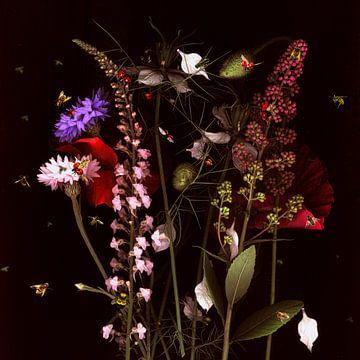 Blumenwiese von Thomas Hesse
