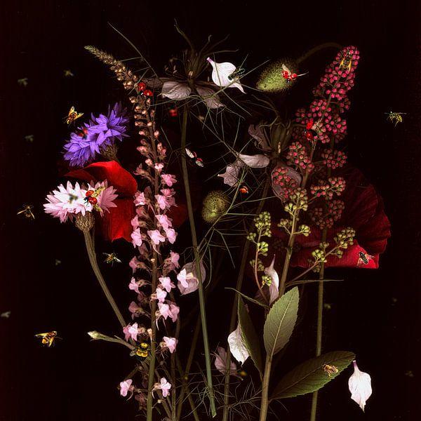 Blumenwiese | Flower meadow von Thomas Hesse