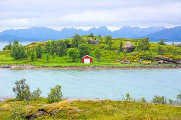 Scenery on the Island of Hinnøya van Gisela Scheffbuch