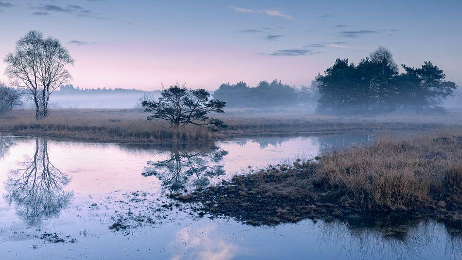 Twents landschap in mist van Yvonne Kruders