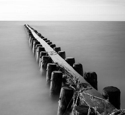 Friese kust van