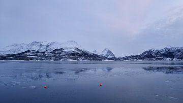 Ågskardet vanaf Esøya van Jane Lin Ness