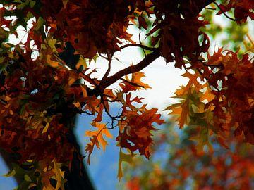Fall sur