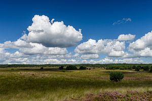 Hollandse lucht
