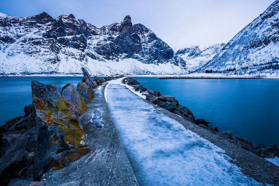 IJzig winterlandschap in Senja / Lofoten, Noorwegen. van Martijn Smeets