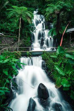 Prachtige waterval op Bali van road to aloha