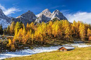 Hutje in de Alpen