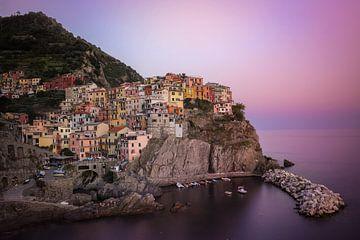 Manarola, Cinque Terre, Italien von Isabel van Veen
