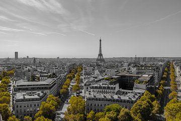 Paris in schwarz weiß und grün von Patrick Löbler