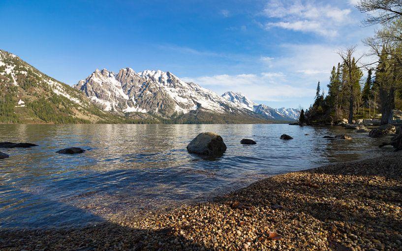 Mountain view Grand Teton van Wilco Speksnijder