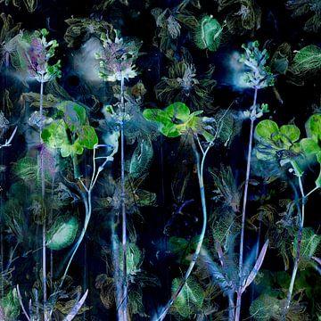 Malerisches, abstraktes Foto mit Blumen in Grüntönen. von Saskia Dingemans