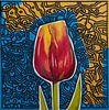 Tulpe von Jeroen Quirijns Miniaturansicht