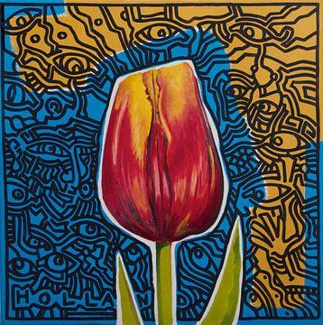 Tulp van Jeroen Quirijns