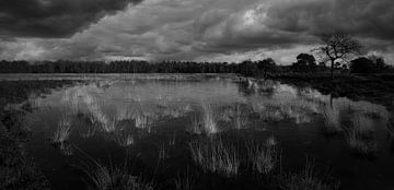 Wanneer de winter komt (Z/W) van Mart Houtman