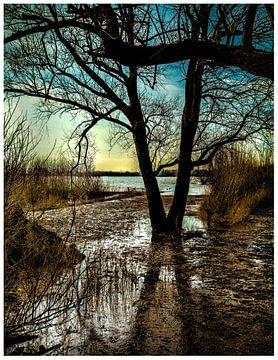 Niederländisches Wasserland von Mariska Asmus