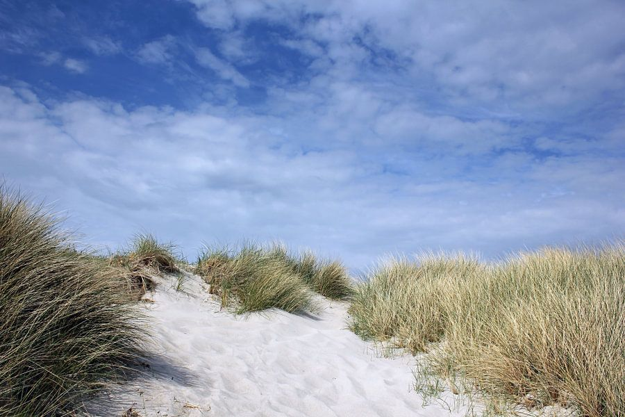 Dünenlandschaft van Ostsee Bilder