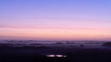 Mist bedekt de duinen en de bomen op Terschelling tijdens het schemerlicht van Alex Hamstra