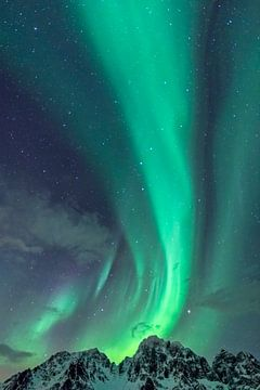 Nordlichter oder Aurora Borealis in der sternenklaren Nacht über den schneebedeckten Berggipfeln der von