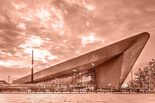 Gare Centrale de Rotterdam - monochrome