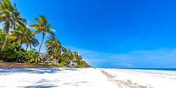 Plage blanche tropicale avec mer azur et ciel bleu et palmiers sur Steven World Traveller