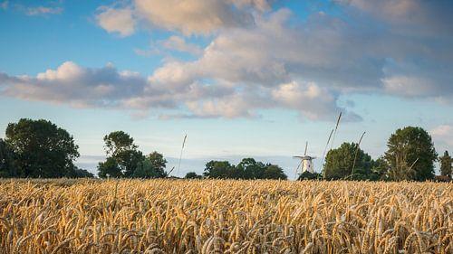 Hollands plaatje met molen in Veere, Zeeland
