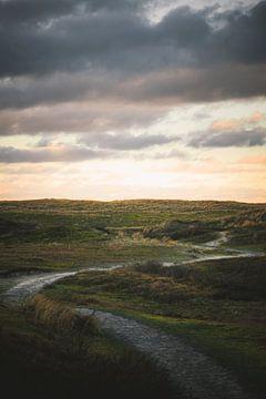 Wandeling door de duinen van Tes Kuilboer
