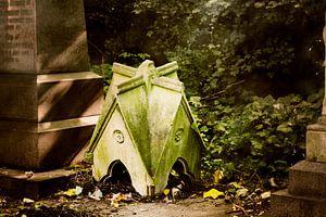 Klein huis in het najaar forest