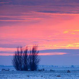 Winterlandschap bij zonsondergang van Frank Peters