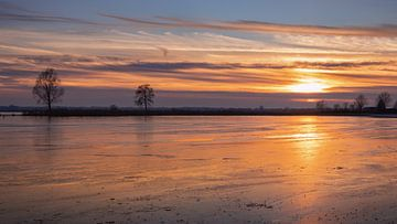 Winter aan het Zuidlaardermeer van Marga Vroom