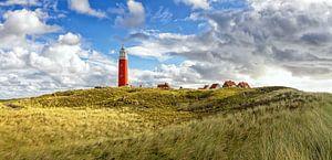 Panorama Vuurtoren van Texel / Panoramic Texel Lighthouse