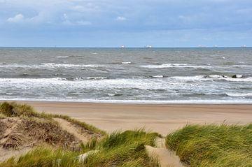 Strand und Dünen von Carla Eekels